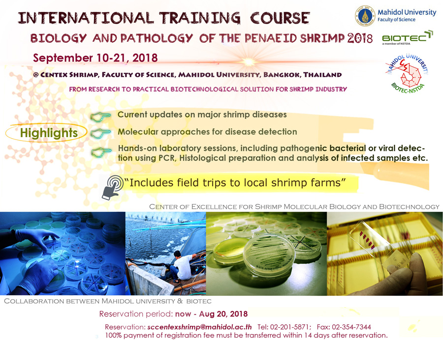 International Training  Course